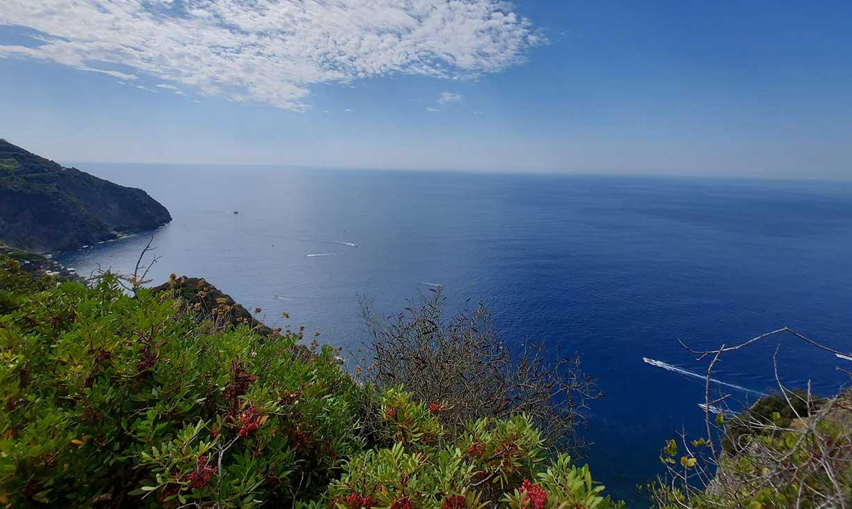 camminata-terapeutica-alle-Cinque-Terre-panorama